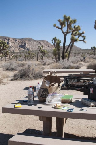 2013-02-Road_Trip-Joshua_Tree1