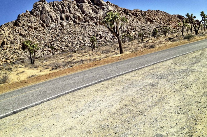 2013-02-Road_Trip-Joshua_Tree7